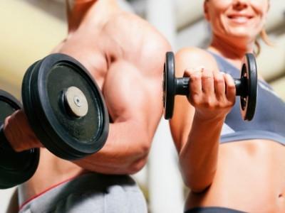 definición músculos
