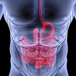 Enfermedades digestivas, la oclusión intestinal