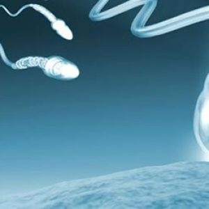 Fecundación in vitro vs inseminación artificial