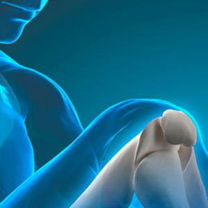 Cómo el colágeno cuida la salud de tus articulaciones