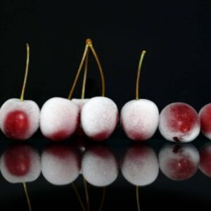 Beneficios para la salud de los productos congelados de calidad